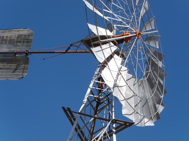 Windmill 01 Ludwig Haskins