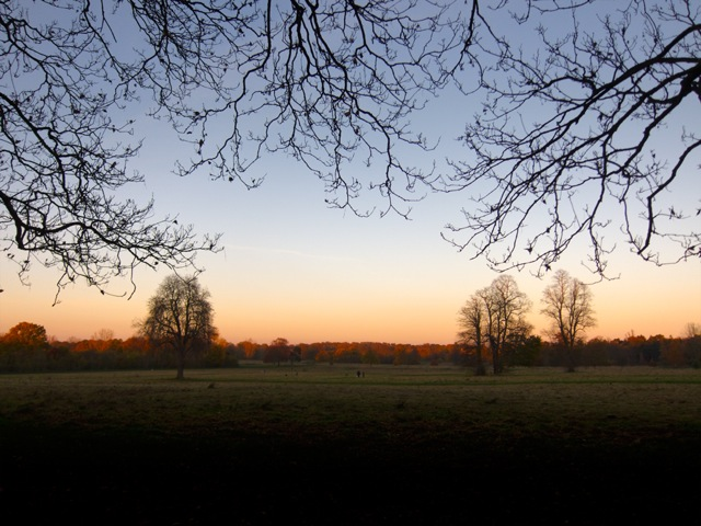 Nonsuch Autumn Sunset